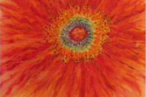 Join Us for Our Summer Solstice Social, June 24