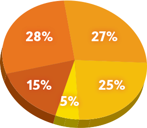 Fiscal Year 2016-17 Revenue Pie Chart