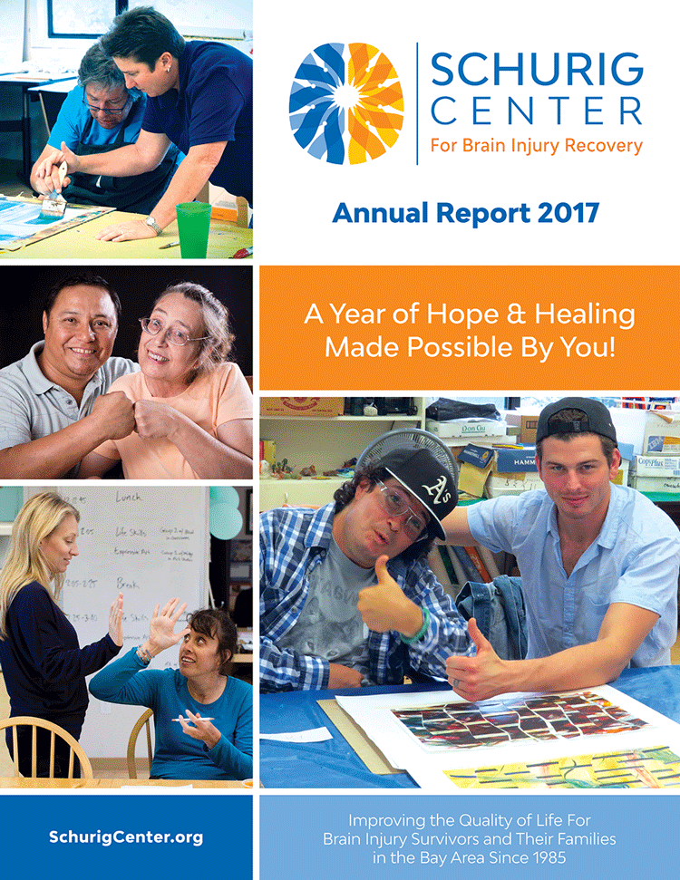 Image of 2017 Annual Report Cover