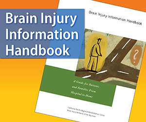 Brain Injury Handbook Image