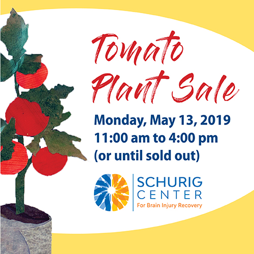 Tomato Plant Sale Graphic
