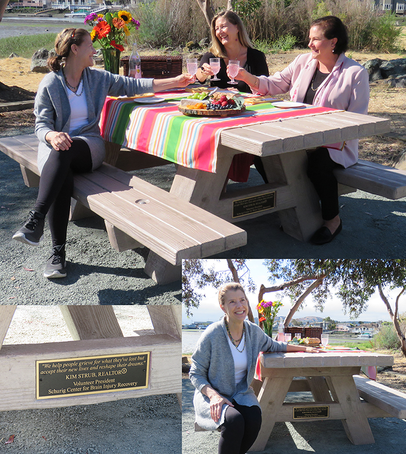 Photo of collage of people celebrating picnic table